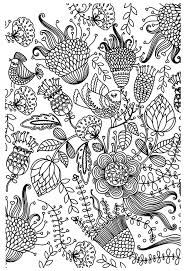 Doodle Coloring Colouring Printable Adult Advanced Detailed Free Page Antistress Birds