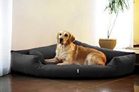 répulsif pour canapé magnifique repulsif chien canape meubles trivia tr4 02 canapé d