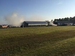 Crews Respond To Hay Barn Fire In Pitt County 3 Barns Lessons Tes Teach Hay Barn Interior Stock Photo Getty Images Long Valley Heritage Restorations When Where The Great Wedding Free Hay Building Barn Shed Hut Scale Agriculture Hauling Lazy B Farm With Photos Alamy For A Night Jem And Spider Camp Out In That Belonged To Richardsons Benjamin Nutter Architects Llc Filesalt Run Road With Hoodjpg Wikimedia Commons Press Caseys Outdoor Solutions Florist Cookelynn Project Dry Levee Salvage
