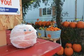 Central Wisconsin Pumpkin Patches by Families Welcome In Fall At Oak View Pumpkin Patch News