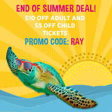 Save Up To $10 On Tickets With Promo... - Ripley's Aquarium ... Turtle Beach Coupon Codes Actual Sale Details About Beach Battle Buds Inear Gaming Headset Whiteteal Bommarito Mazda Service Vistaprint Promo Code Visual Studio Professional Renewal Deal Save Upto 80 Off Palmbeachpurses Hashtag On Twitter How To Get Staples Grgio Brutini Coupons For Turtle Beaches Free Shipping Sunglasses Hut Microsoft Xbox Promo Code 2018 Discount Coupon Ear Force Recon 50 Stereo Red Pc Ps4 Onenew