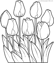 Free Printable Coloring Tulip Pages 60 For Line Drawings With