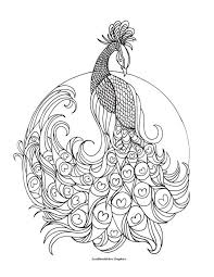 Peacock Coloring Pages For Adults Precious Moments Tell Me Your