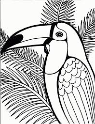 Toucan Coloring Pages For Kids