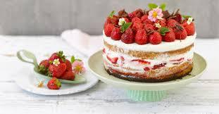erdbeer sahne torte ganz einfach gemacht
