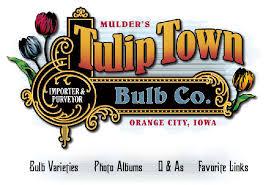 tulip town bulb co orange city