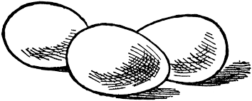Fried Egg clipart line drawing 1