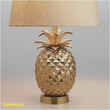 Pier 1 Pineapple Floor Lamp by Table Lamps Design Unique Pineapple Table Lamp Ba