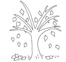 Beech Tree Fall Leaf Coloring Page
