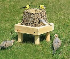Duncraft Seed Block and Platform Set Bird Feeder