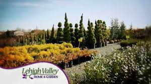Christmas Tree Shop Allentown Pa by Home Lehigh Valley Home And Garden