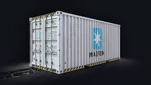 100 Shipping Container Model MAERSK 20 3D