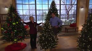 Bethlehem Lights Christmas Trees by Bethlehem Lights 5 U0027 Upswept Douglas Fir Tree Page 1 U2014 Qvc Com