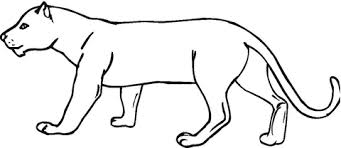 Panther Coloring Page