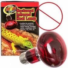 Ceramic Heat Lamp For Hedgehog by Habitat