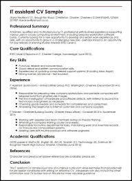 IT Assistant CV Sample