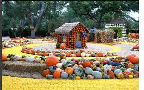 Flower Mound Pumpkin Patch Flower Mound Tx by Best Pumpkin Patches In Dfw Kplx Fm