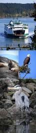 Kachemak Gear Shed Wa by 17 Best Images About Canada West U0026alaska On Pinterest Canada