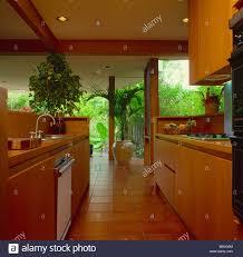 offene küche mit zimmerpflanzen aus holz einheiten und