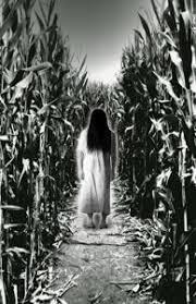 Sauvies Island Pumpkin Patch Corn Maze by Nights Of Gore Haunted Corn Maze Corn Maze Pinterest Corn