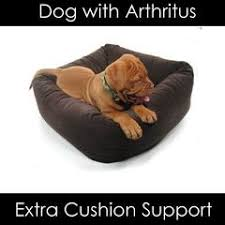 Top Rated Orthopedic Dog Beds by Top Rated Dog Beds For Large Dogs Big Wags