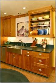 Amish Cabinet Makers Wisconsin by Kitchen Cabinets Madison Wi Home Decoration Ideas