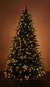 Lifelike Artificial Christmas Trees Uk by The 10ft Ultra Devonshire Pre Lit Fir Tree With White Leds
