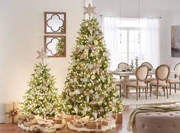 Dunhill Christmas Trees by Find All Types Of Christmas Trees At The Home Depot