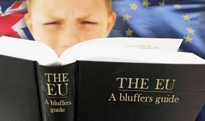 EU DEBATE A Bluffers Guide To The EU And Why Tonights Clegg Vs