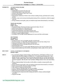 Resume Summary Examples Welder Unique Experience Certificate Format Doc Copy Image Sample