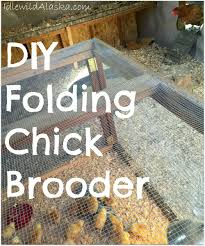 DIY Folding Chick Brooder -- As Much As I Love Backyard Chickens ... Chicken Brooder Box For Sale Australia With My New I Built The Raising Baby Chicks Without A Hen First 6 Weeks Outpak Backyard 12 Qc Supply Yes You Certainly Can Brood Outdoors Backyard Chickens Online Buy Whosale Chick When To Move From Coop Outside Ikea Inspired Poultry Forum Fresh Eggs Daily 8 Boredom Busters For Advice Box Simple And Efficient With Pictures
