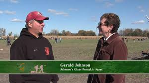 Pumpkin Farms In Bay County Michigan by Great Getaways Johnson U0027s Giant Pumpkins Saginaw Mi Youtube