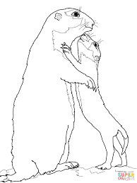 Click The Prairie Dog Baby And Mother Coloring Pages