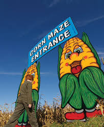 Pumpkin Picking In Nj Monmouth County heaven hill farm u0026 garden center vernon nj pumpkinpatch fall