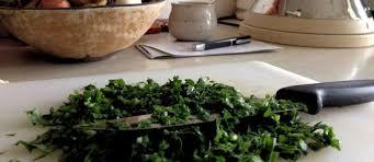 cuisine sauvage recettes d ail des ours et de cuisine sauvage