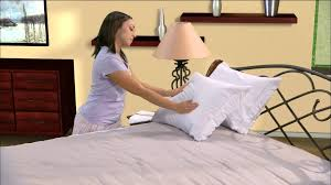 allerzip allergy dust mite bed bug proof pillow covers by