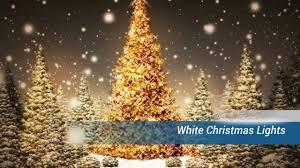 splendi white lights projection led