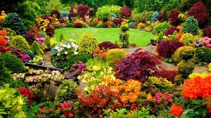 Beautiful Backyard Garden - Colorful Garden Wallpaper Download ... 24 Beautiful Backyard Landscape Design Ideas Gardening Plan Landscaping For A Garden House With Wood Raised Bed Trees Best Terrace 2017 Minimalist Download Pictures Of Gardens Michigan Home 30 Yard Inspiration 2242 Best Garden Ideas Images On Pinterest Shocking Ponds Designs Veggie Layout Vegetable Designing A Small 51 Front And