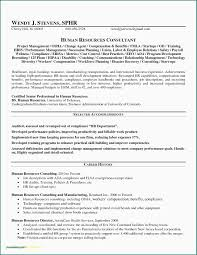 Hr Manager Resume Sample Doc New International Business Manager ...
