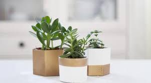 50 idées pour customiser un cache pot hellocoton