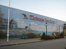 Christmas Tree Shop Deptford Nj Number by Wall Mural At The Christmas Tree Shops Scarborough Maine Usa