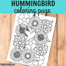 Hummingbird Coloring Page For Grown Ups