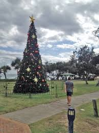 Christmas Tree Baler Craigslist by Craigslist Christmas Tree Baler
