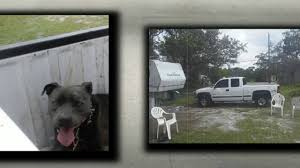 Brevard Man Accused Of Dragging Dog Behind Moving Truck Best Dog Crate For Pickup Truck Beds Soft Plastic Alinum Bearded Dogs Food Truck Is Now Sling Gourmet Dogs At A Brewery Dog 2 Album On Imgur And Richmond Sand Gravel Landscaping Large Seen In The Back Of A Waiting Its Owner Stock Bernese Mountain Puppies In Doggies Swiss Takes Semi On Joyride Crashes Into Tree And Parked Car Treat East Greenbush Albany Ny Mugzys Barkery Cowgirl Driving Old Stocksy United Pbs 4 Axle Delivery Muscat Arizona Patrol Volunteer Saves Tied To Heading 3 Trailer