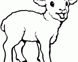 Lamb Images Coloring Pages Fun Printable