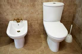 home remedy for clogged toilet drains hunker