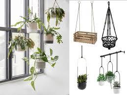 hängende pflanzen contemporary living room dresden