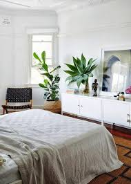 Plants For Bedroom Inspiring With Picture Of Minimalist In Ideas