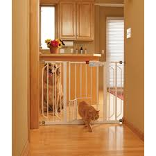 Pet Stairs For Tall Beds by Carlson Pet Products Extra Wide Expandable Gate With Small Pet
