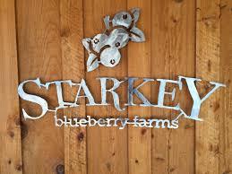Pumpkin Patch Tampa Fl 33615 by 2017 U Pick Season Final Day 6 03 17 Starkey U Pick Blueberry Farm